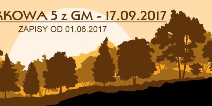Parkowa 5 Z Grupą Malbork – (Bieg 2x5km / Nordic Walking 5,7km) 17.09.2017r.